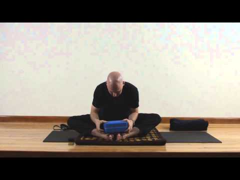 Restorative | Yin Yoga for the Spine w Josh Summers